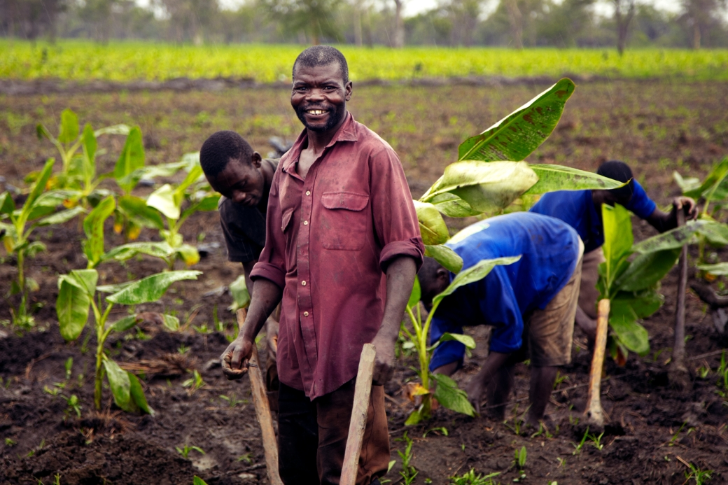 froosh, fruit farms, trade, trade not aid, international development, africa